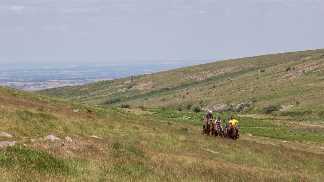 Dartmoor Crossing