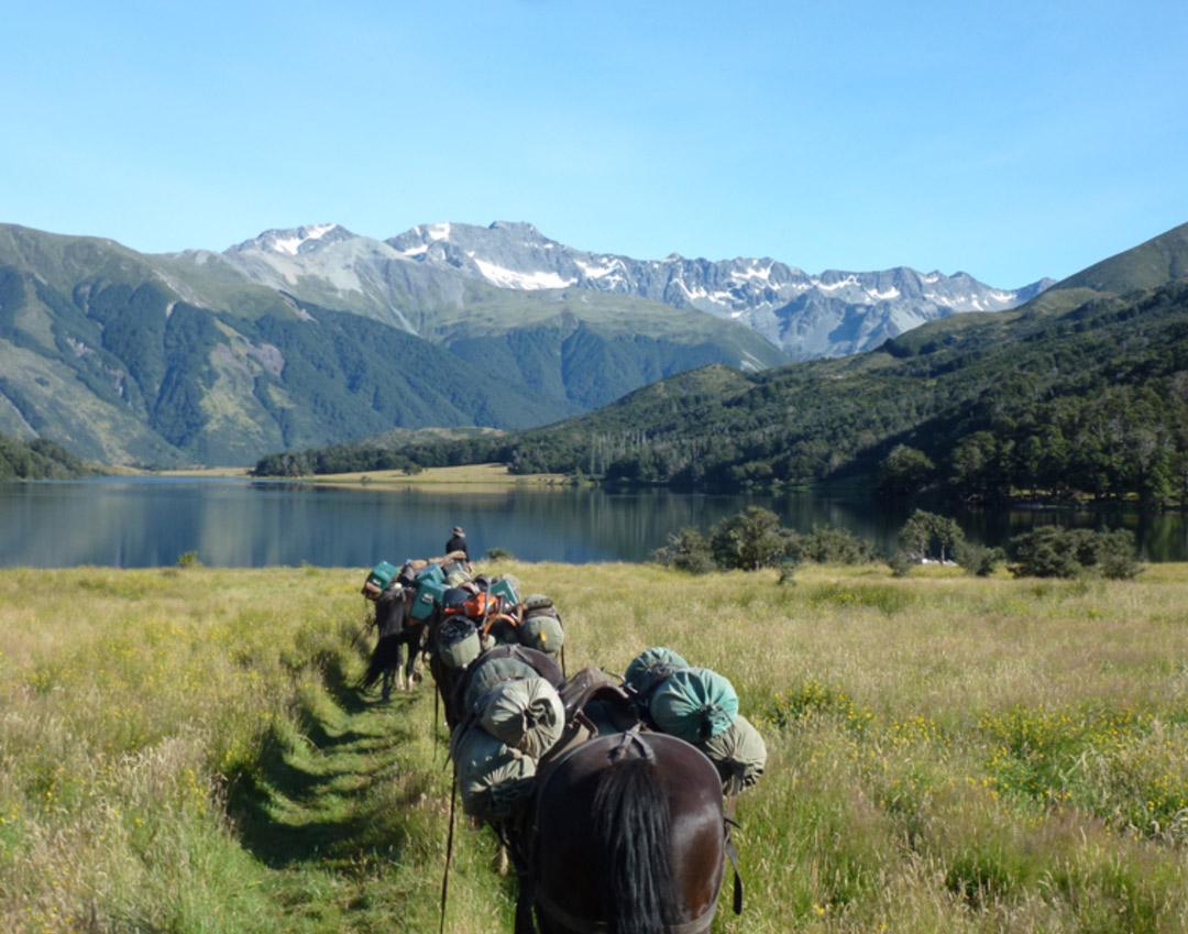 South Island Explorer Trail