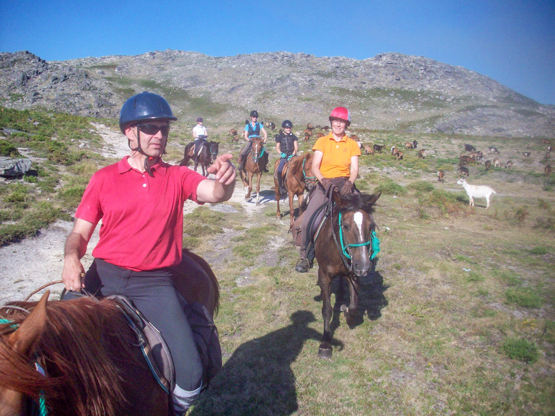 Wild Horses Trail - Horse Riding Holidays Portugal