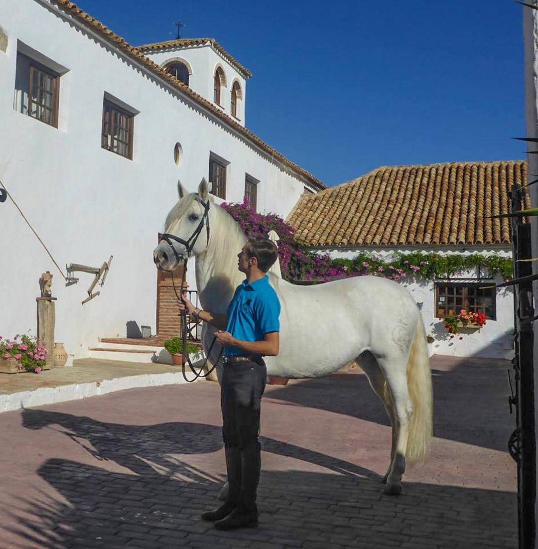 Andalusian Hacienda