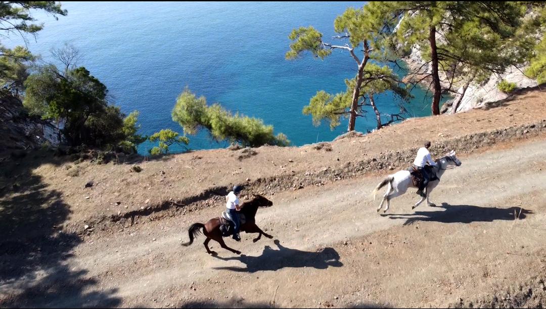 Blue Coast Trail