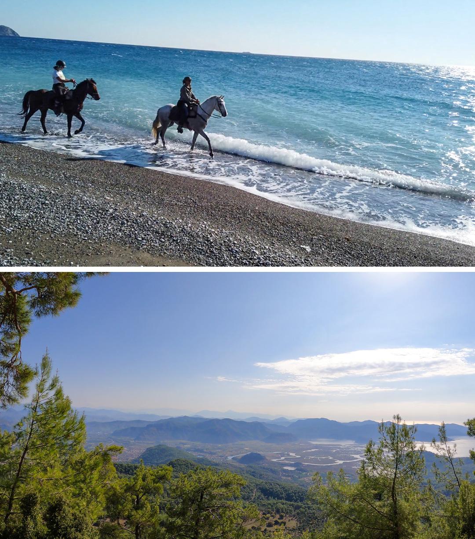 Blue Coast Trail - Accomm